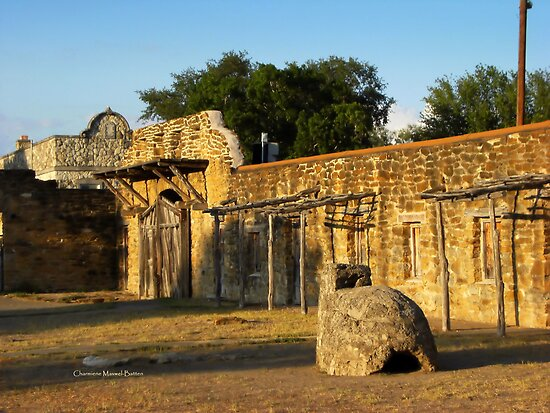 Historic Spanish Missions by Charmiene Maxwell-batten