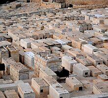 Jewish Graves by KhanasWeb