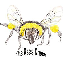 The Bee's Knees by seahorseart