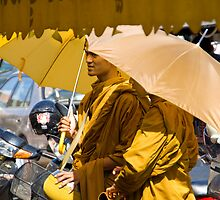 The Daily Monk by byronbackyard