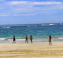 Magnificent Beach On Isabela In The Galapagos by Al Bourassa