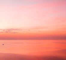 Pink Bliss, East Nusa Tenggara by Cherrybom