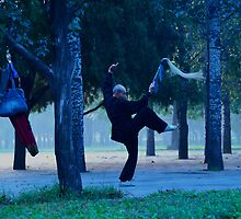 Wu Shu in the Park by the WORLD in a  FRAME