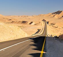 Desert road. by Oleg Zaslavsky