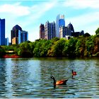 Piedmont Park Spring 2014 by timsmith2001