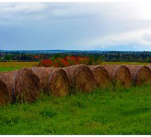 Hay Stacks in Fall by BrasdOrLife