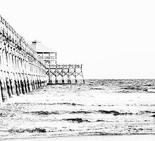 Folly Beach Pier: Charleston, SC by Kadwell