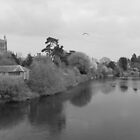 Hereford Cathedral by Lisa Blick