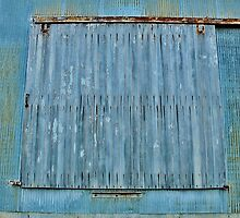 A Door the Color of Denim by Martha Sherman