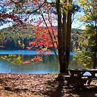 Fall around the lake by KSKphotography
