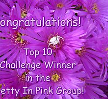 Pretty in Pink Top Ten Challenge Banner by Lee Jones