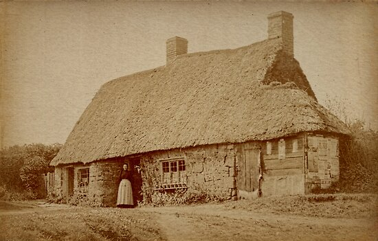 Thatched Cottage by Elaine Teague