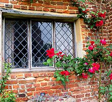 An Old Leaded Window  by hootonles