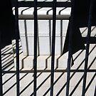 Dark Lines At George Washington's Tomb by Cora Wandel