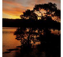 Mangrove Sunset Photographic Print