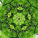 Forest Green Fractal Art by Tori Snow