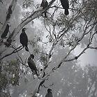 Cormorants on a Foggy Day by Lozzar Landscape