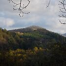 springtime in the Blue Ridge Mountains - view from my deck by KSKphotography