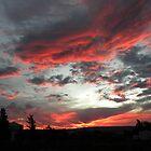 Sunset by Pieta Pieterse