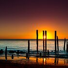 Willunga Wonders by Andrew Dickman
