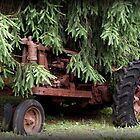 Tractor in Hiding by nastruck