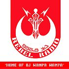 356.3 FM Rebel Radio by NerdUnemployed