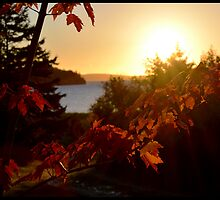Fall on the Bras d'Or by BrasdOrLife