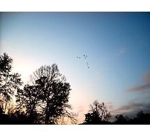 Learning to Fly Photographic Print