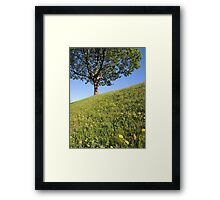 Happy Inclination Framed Print