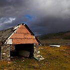 The Old Boatshed by Alison Scotland