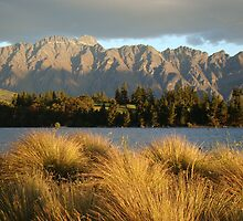Dusk in Queenstown by davidandmandy