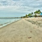 Morning at Cape Coral Beach  by John  Kapusta
