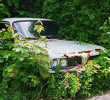 Rusty Old Car by lezvee