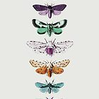 Techno Moth Collection by Zeke Tucker