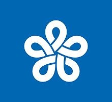 Flag of Fukuoka Prefecture  by abbeyz71