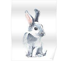 Moon Rabbit II Poster