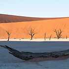 Deadvlei at sunrise by Marylou Badeaux