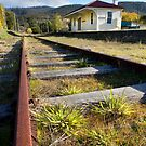 Westerway Station, Derwent Valley, Tasmania by clickedbynic
