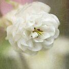 Columbine white by RosiLorz