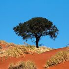Tree in Namibia by Marylou Badeaux