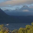 Morning In Queenstown by davidandmandy