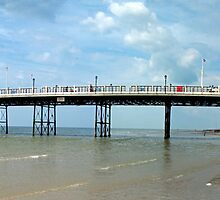 Worthing Pier Panorama by mikebov