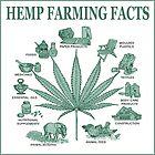 Hemp Farming  by Peace N Freedom by Design