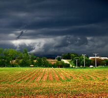 Storm Sky by Nadya Johnson