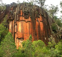 Sawn Rocks - Mount Kaputar National Park by Michael Matthews