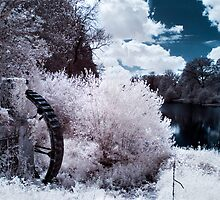 Stourhead Water Wheel - Infrared by Paul Woloschuk