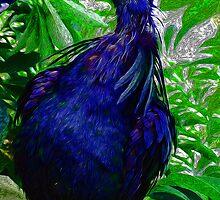 A strange bird by mrfriendly
