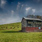 Mail Pouch Tobacco - Coshocton, Ohio USA by Edith Reynolds