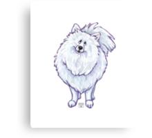 Animal Parade White Pomeranian Canvas Print