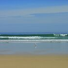 Gulls and Waves, Tolsta Beach, Isle of Lewis by kathrynsgallery